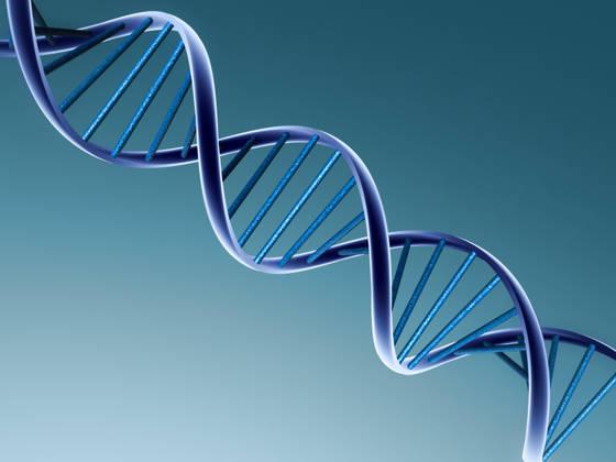Peter S. dosegel tudi diskretno testiranje DNK