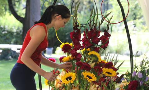 Kršitev cvetličarjev, vrtnarjev, svečarjev in vulkanizerjev vedno manj
