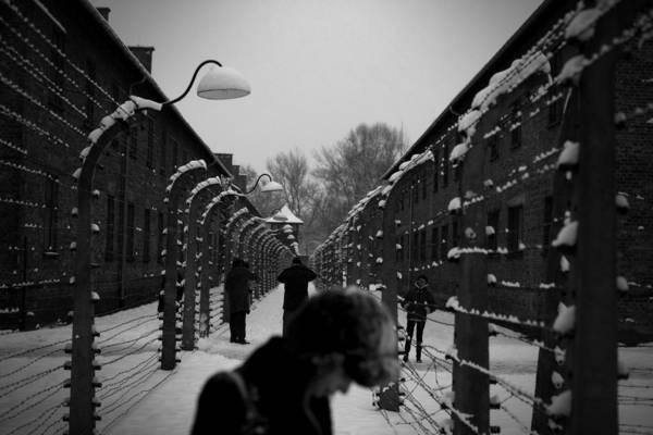 Auschwitz - cover