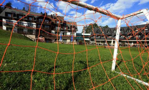 Zakaj Maribor potrebuje Mandarića?
