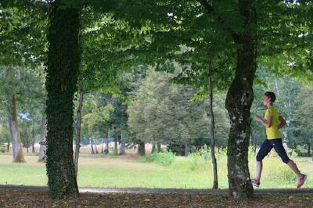 FOTO:Jesenski test copat: Tek v jesen, 3. del