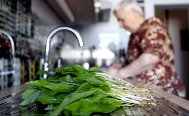 Podlesek je najbolj smrtonosna, a ne edina strupena rastlina, s katero so ljudje že zamenjali čemaž. FOTO: Roman Šipić/Delo