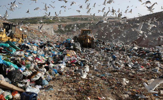 Ameriški in britanski znanstveniki so pred nekaj dnevi sporočili, da so po naključju ustvarili encim, ki je sposoben razgrajevati plastiko. Odkritje bi bilo lahko revolucionarno pri reševanju problematike vse večje onesnaženosti s plastiko. FOTO: Thanassis Stavrakis/AP