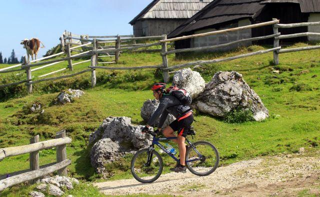 Pri dolgotrajnem kolesarjenju se lahko zaradi prisilne drže pojavijo neznosne bolečine.