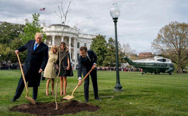 Državnika sta drevo zasadila v družbi svojih soprog. FOTO: AP