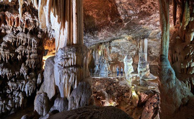 V Parku Postojnska jama rekordi v zadnjih letih niso nič novega. FOTO: Arhiv Postojnska Jama/