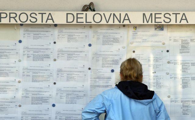 Brezposelnost se je zmanjšala po vsej Sloveniji. FOTO: Aleš Černivec