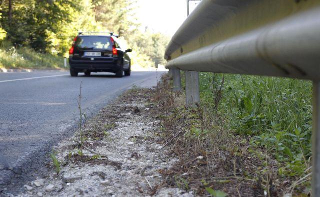Glifosat je postal najbolj priljubljen herbicid, ker je učinkovita, poceni in hitra rešitev za odstranjevanje plevelov, vendar je z vidika obremenjevanja okolja in zdravja njegova uporaba nesprejemljiva. FOTO: Leon Vidic/Delo