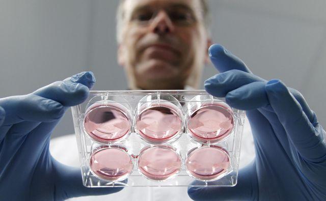Nizozemski znanstvenik Mark Post meni, da bo prvo gojeno meso na trgu leta 2020. Foto Reuters