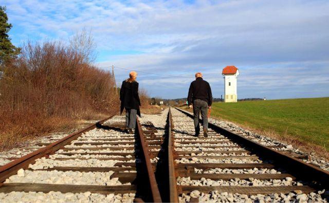 Vse stranke so prepričane, da je treba izpeljati vse strateške projekte, rešitev tranzitnega prometa pa vidijo predvsem v posodobitvi železniškega omrežja. FOTO: Roman Šipić/