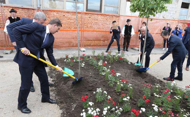 Češnjo sta posadila predsednik vlade Miro Cerar in Peter Weber, lipo pa Ikuji Ikeda in japonski veleposlanik v Ljubljani Keiji Fukuda.