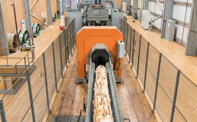 Linija v žagi Fort William družbe BSW na Škotskem, podobna kot bo na Gomilskem.