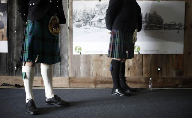 Škotski BSW v slovenskem lesu vidi velik potencial. FOTO: Blaž Samec/Delo