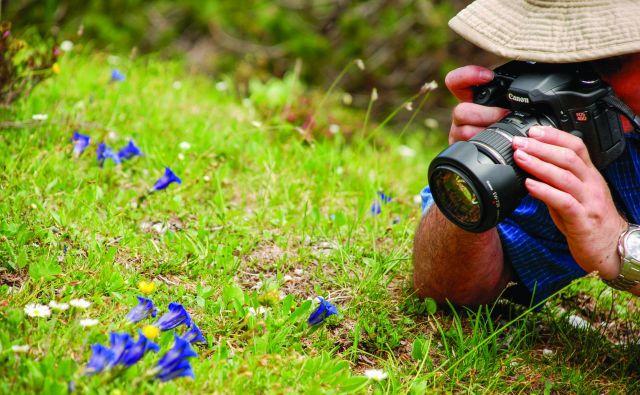 Konec tedna se bo v Bohinju začel 12. festival cvetja. FOTO: Mojca Sodja/arhiv Turizem Bohinj