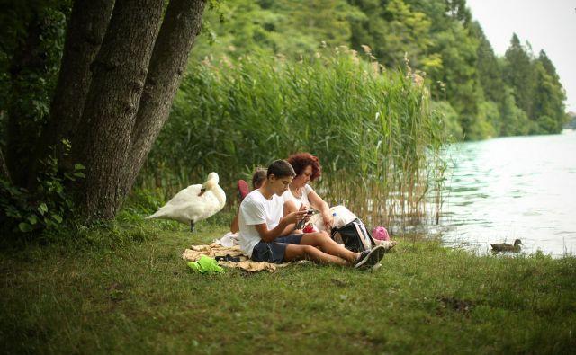 Okoljski odtis je zelo povezan z zdravjem ljudi. FOTO: Jure Eržen/Delo
