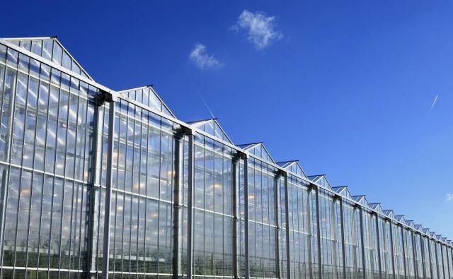 Rastlinjaki, kakršne načrtuje nizozemski Livingstone Ventures. FOTO: Arhiv Livingstone Ventures/