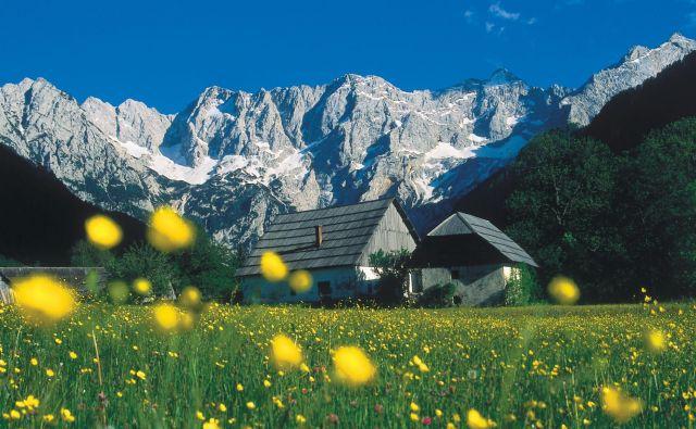 Idila pod okriljemKamniško-Savinjskih Alp in Karavank. FOTO Primož Šenk