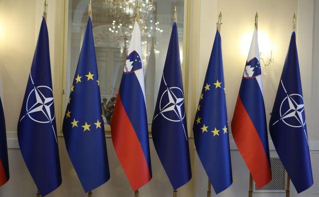 Čeprav so mnenja o slovenski zastavi in grbu v javnosti precej deljena, ju stranke ne nameravajo spreminjati. FOTO Jože Suhadolnik