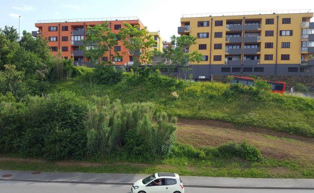 Ob Dolinski cesti koprska občina za jesen napoveduje največji neprofitni stanovanjski projekt doslej; gradnjo bloka s 160 neprofitnimi stanovanji.<br /> FOTO: Boris Šuligoj