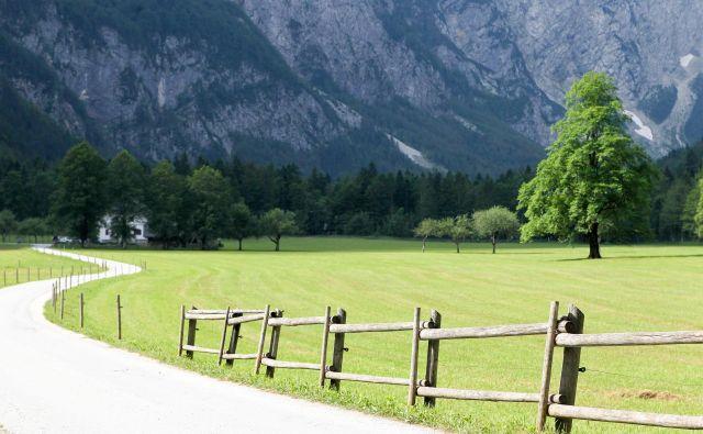 V postopku za sprejem je tudi KP Logarska dolina. TNP, Kozjanski park, Park Škocjanske jame že imajo znak Slovenia Green Park. FOTO Marko Feist