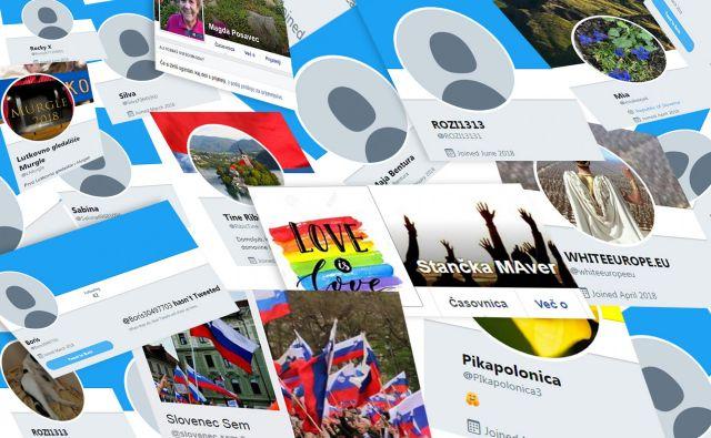 Številni profili so se na omrežjih pojavili tik pred volilno kampanjo, po njej pa bolj ali manj potihnili. FOTOMONTAŽA: Miša Arko