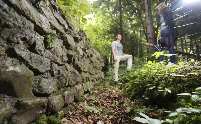 Jure Kusetič, arheolog, ki odstira skrivnosti ajdovskega zidu.