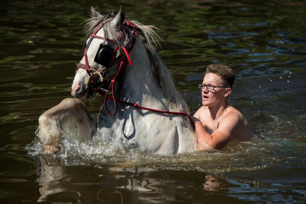 FOTO:Sejem konjev v Applebyju