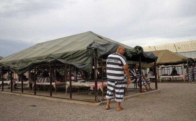 Šerif Joe Arpaio je zapornike v svojem Šotorskem mestu v črtastih uniformah in rožnatem spodnjem perilu postavil pod puščavsko sonce Arizone. FOTO: Reuters