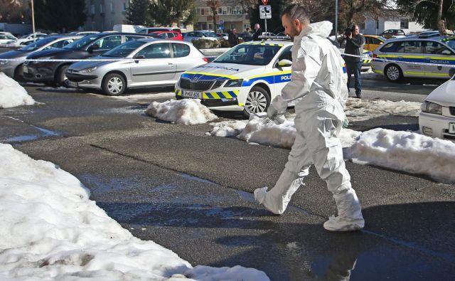 Policija je kot motiv za dejanje navedla maščevanje. FOTO: Tadej Regent/Delo