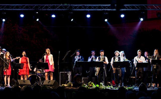 The Moonlighting Orchestra<br /> Foto arhiv zasedbe