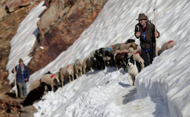 Foto Lisi Niesner Reuters