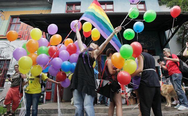 Parada ponosa bo letos že osemnajsta zapored. Foto Jože Suhadolnik