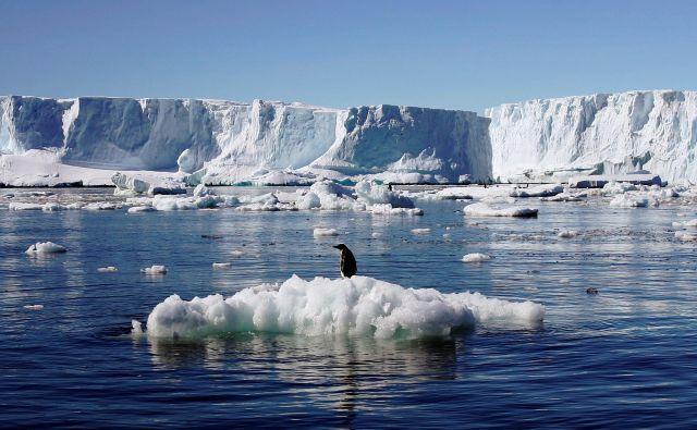 Po sedanjih trendih bi Antarktika ob Grenlandiji lahko postala nov največji vir vode, ki bi dvigoval gladino oceanov. FOTO: Reuters