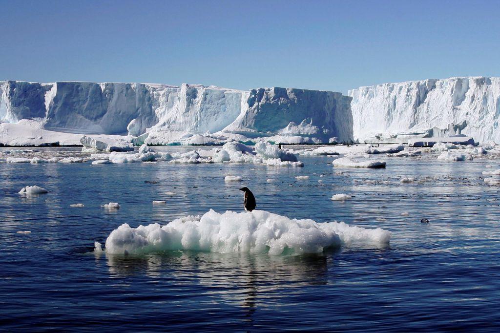 Alarm zaradi zelo hitrega krčenja ledu na Antarktiki