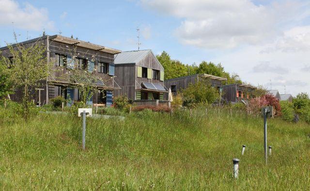 Trajnostne socialne lesene hiše so opremljene s solarnimi paneli. FOTO: Mathilde Golla