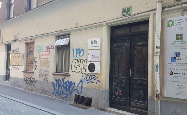 Na Mali ulici 8 v Ljubljani je prijavljenih 48 pravnih oseb, pet je (pre)prodajalcev sadja. FOTO: Maja Prijatelj Videmšek
