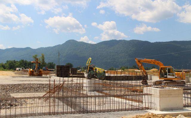 Koles gradi proizvodnjo lesnih lepljencev. Foto Simona Fajfar