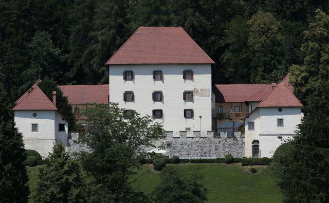 Grad Strmol so prvič omenili ob koncu 13. stoletja, torej je gotovo star več kot 700 let. FOTO: Tomi Lombar