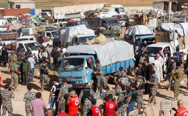 Sirski begunci, ki se iz Libanona vračajo v porušeno domovino.<br /> FOTO REUTERS
