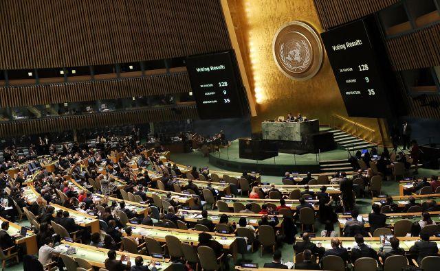 Združeni narodi za en dan vabijo v svoje vrste študente do 29. leta starosti. FOTO: Afp