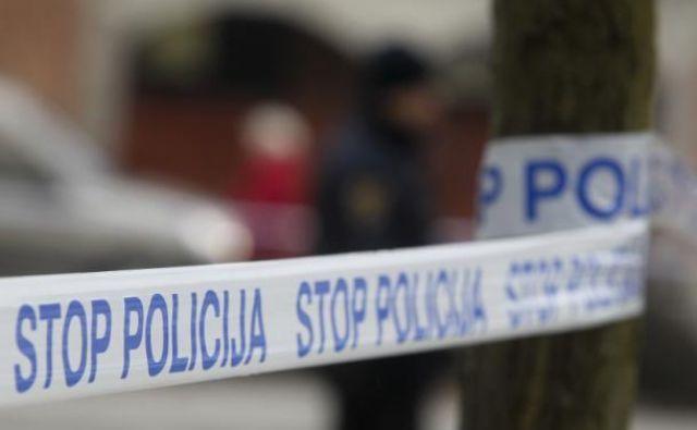 Policisti so v torek posredovali v stanovanjski hiši v okolici Sevnice.FOTO: Marko Feist