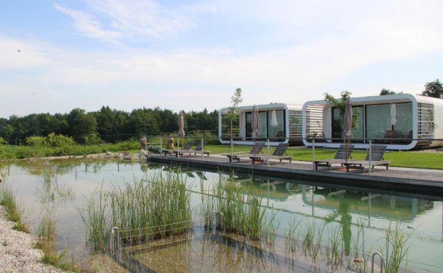 Plavalni ribnik s pogledom na glamping hišice Turizma Malerič.