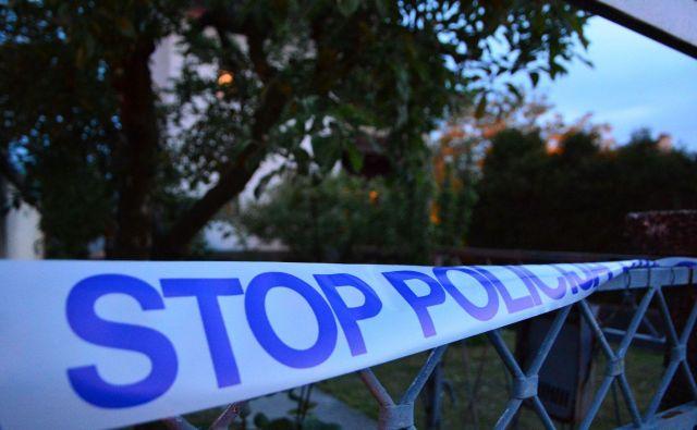Na delu so policisti in kriminalisti. FOTO: Aleš Andlovič