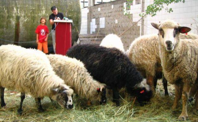 Siniša Labrović: Čreda.org resničnostni šov, 2005 Foto Arhiv Mg