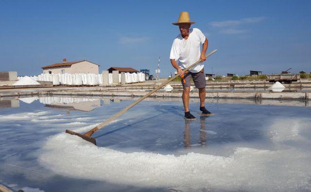 Osman Dedić pravi, da bi že prej pustil gradbeništvo, če bi vedel, kako blagodejno nanj vpliva solinarski poklic. In upa, da bo lahko delal tudi, ko bo v pokoju. FOTO: Boris Šuligoj