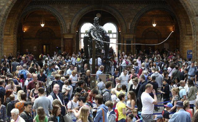 Poletje je čas za razstave. FOTO: Reuters