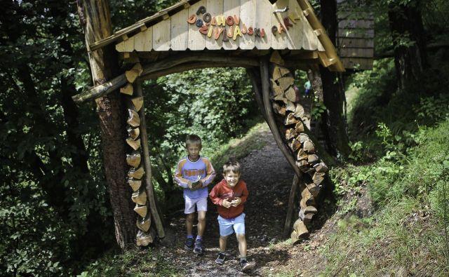 Erik in Nejc sta nam več kot zgovorno prikazala, kako odkrivati skrivnosti doživljajskega parka.<br /> FOTO Jože suhadolnik