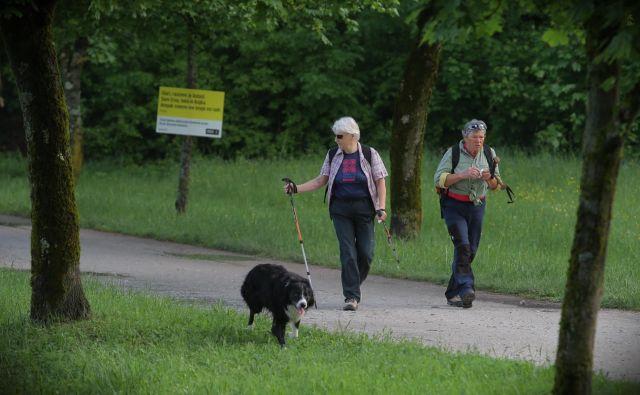 V starostni skupini od 25 do 74 let se 6,6 odstotka prebivalstva zdravi zaradi sladkorne bolezni, v starostni skupini nad 65 le pa veliko več, 15 odstotkov. Tudi bolnikom, ki uživajo zdravila, zdravniki »predpišejo« gibanje in primerno prehrano.<br /> <br /> <em>FOTO</em> Jože Suhadolnik