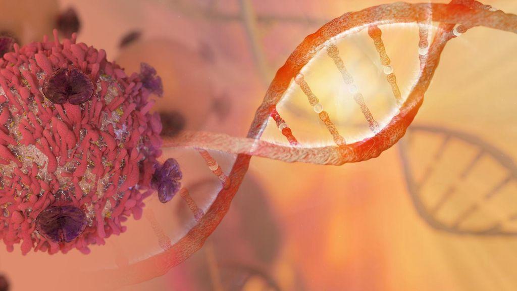 Na Otoku (z nekaterimi omejitvami) odobrili gensko spreminjanje otrok