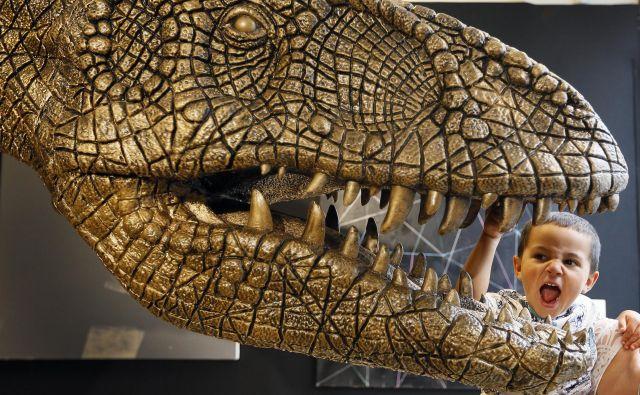 Po besedah soavtorice študije so v preteklosti napačno rekonstruirali podobo tiranozavrov kot bitij, ki jim iz strašnega gobca moli jezik. FOTO: Kirsty Wigglesworth/AP